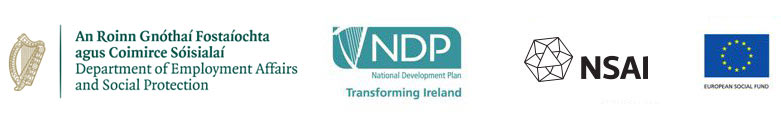 department of employment social protection, ndp, nsai, and european social fund logos